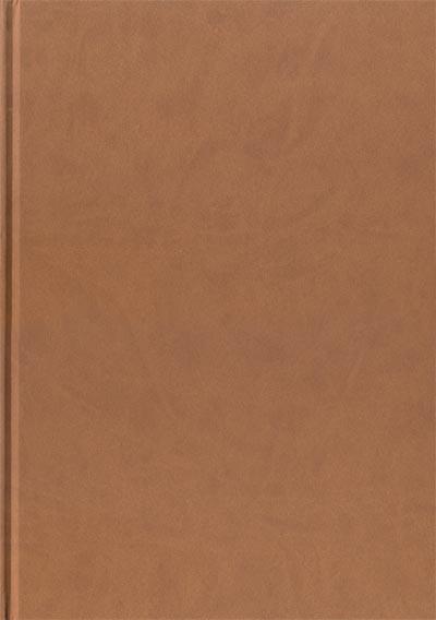 Dos Tirage de tête alim le tanneur tome 3 - la terre du prophète pâle