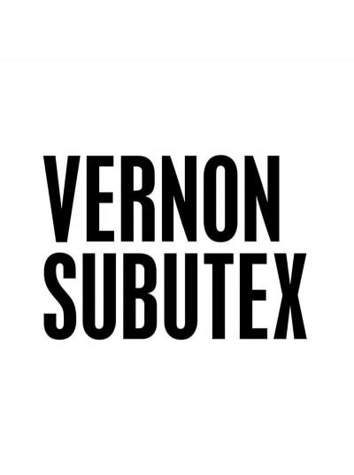 Page 2 Vernon Subutex (BD) tome 1