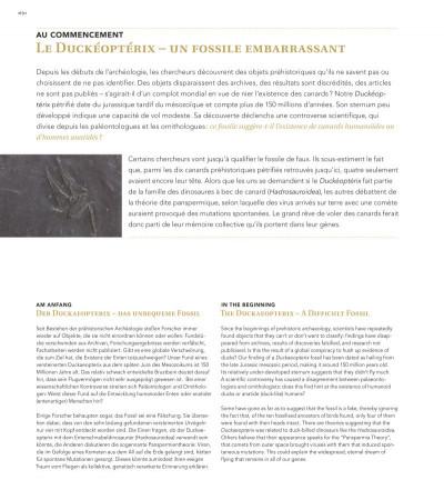 Page 5 L'art du canard