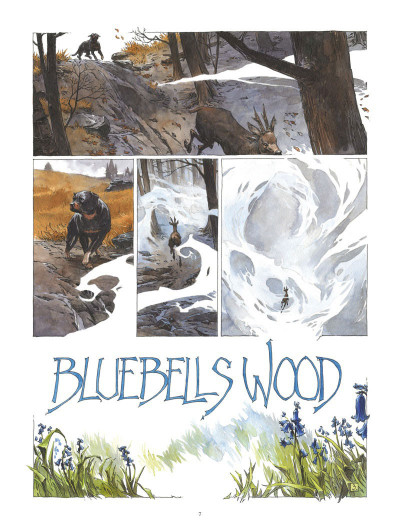 Page 3 Bluebells wood