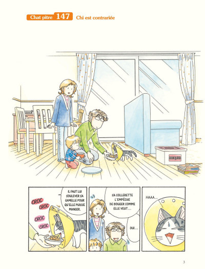 Page 1 Chi - une vie de chat grand format tome 17