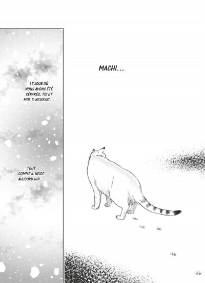 Page 3 Le chat aux sept vies tome 1