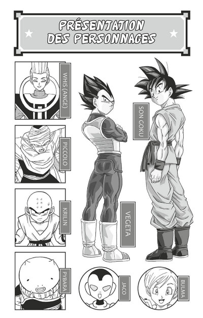 Page 3 Dragon ball super tome 12
