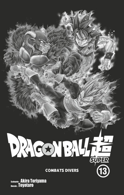 Page 2 Dragon ball super tome 13
