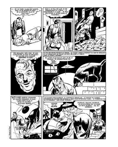 Page 4 The haunt of fear tome 1