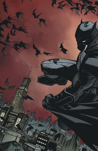 Page 2 Batman tome 1 - la cour des hiboux