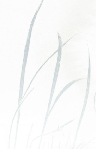 Page 2 fables tome 20 - l'héritier du vent (souple)