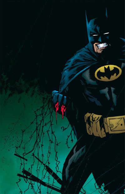 Page 8 Batman no man's land tome 1