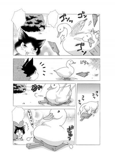 Page 3 Miaou ! Le quotidien de Moustic tome 1