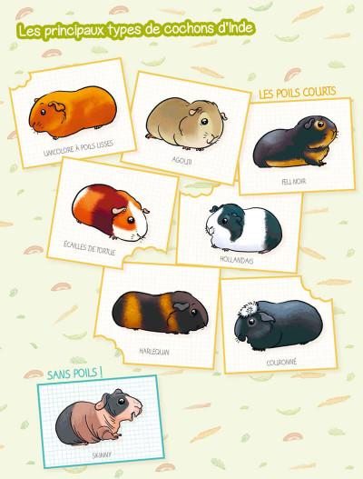 Page 1 Les cochons dingues tome 2