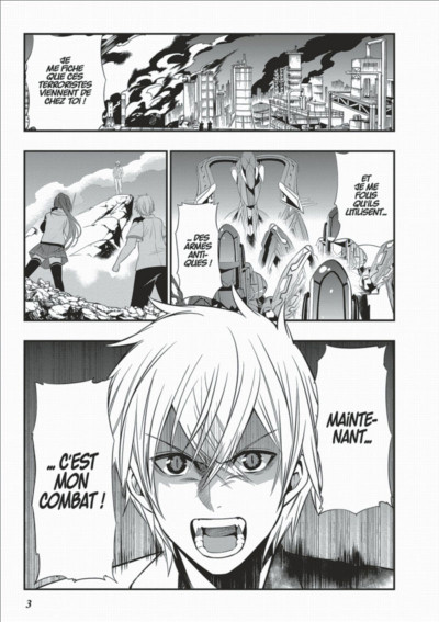 Page 3 Strike the blood tome 6