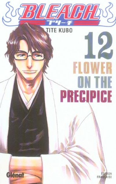 Couverture bleach tome 12 - flower on the precipice