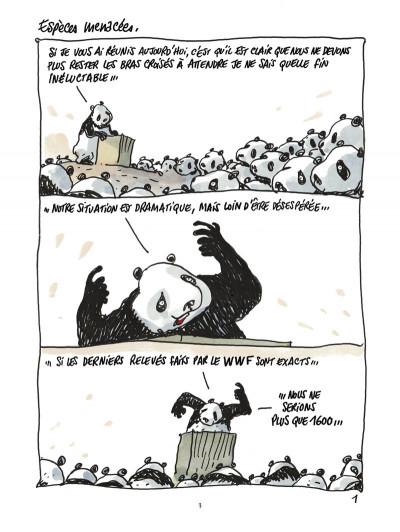 Page 1 pandas dans la brume ; dans les forêts de bambou