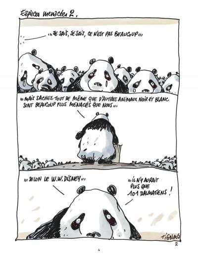 Page 2 pandas dans la brume ; dans les forêts de bambou