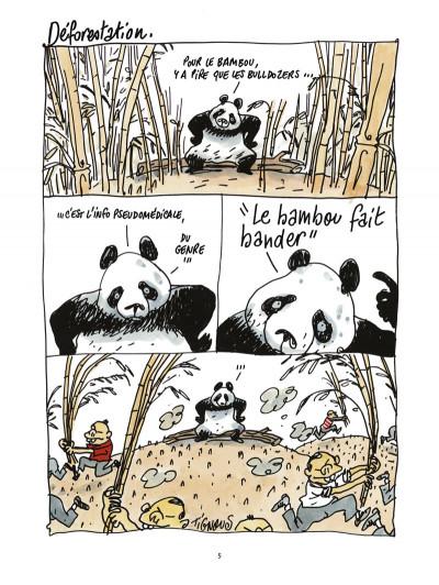 Page 3 pandas dans la brume ; dans les forêts de bambou
