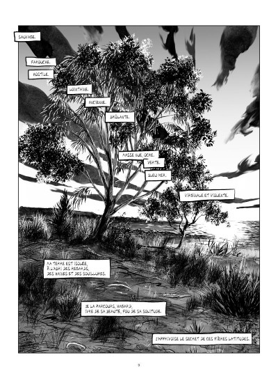Page 1 terra australis
