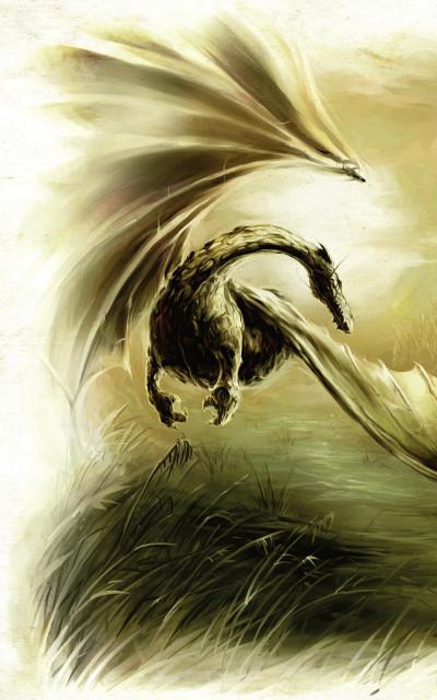 Page 1 Black'Mor chronicles - cycle I ; sur la piste des dragons oubliés
