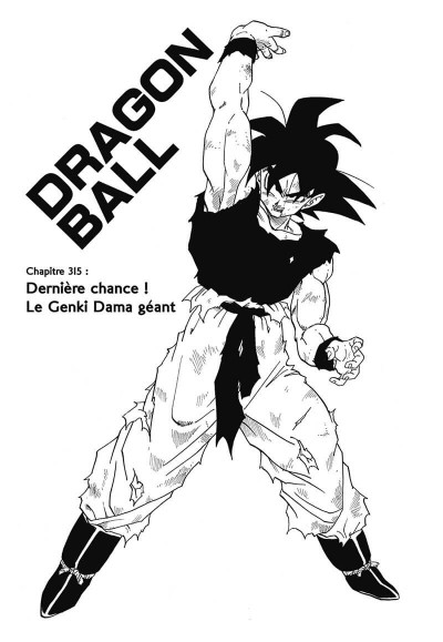 Page 6 Dragon ball tome 22 - perfect édition