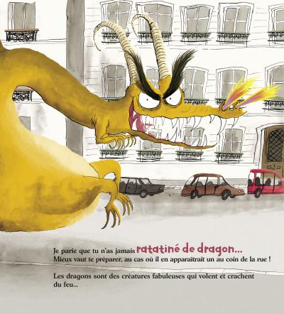 Page 2 comment ratatiner les dragons