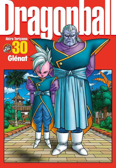 image de dragon ball tome 30 - perfect édition