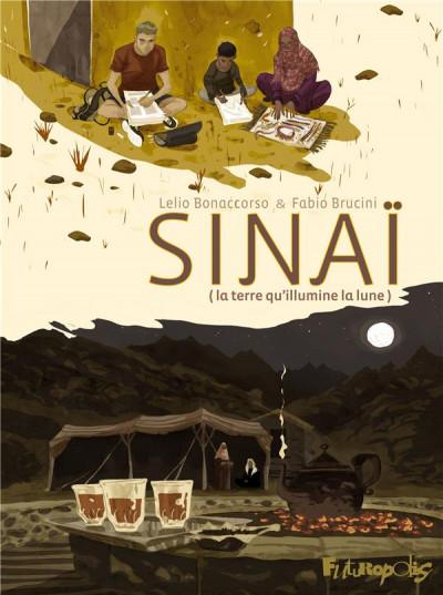 Couverture Sinaï - La terre qu'illumine la lune