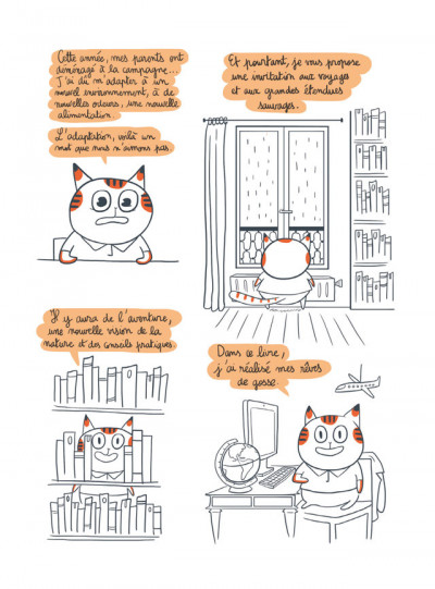 Page 3 Michel, un chat sauvage