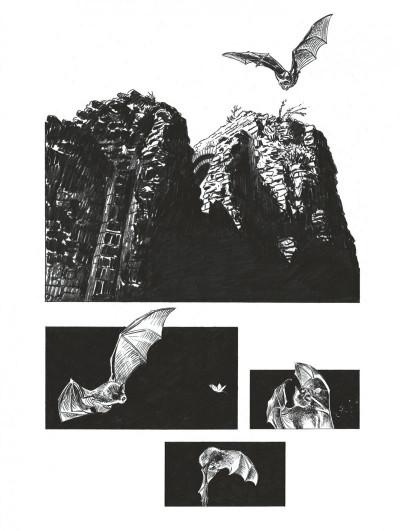 Page 3 Les chemins de compostelle - édition spéciale tome 4