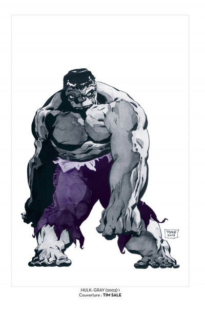 Page 5 Hulk gris - édition 20 ans