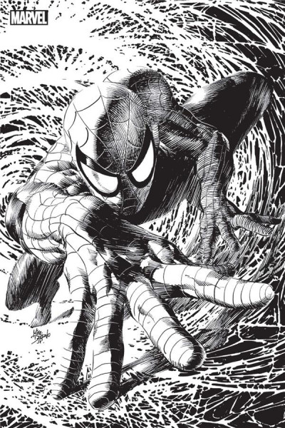 Couverture Spider-man tome 9 (variant Angoulême)
