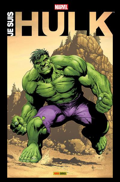 Couverture Je suis Hulk