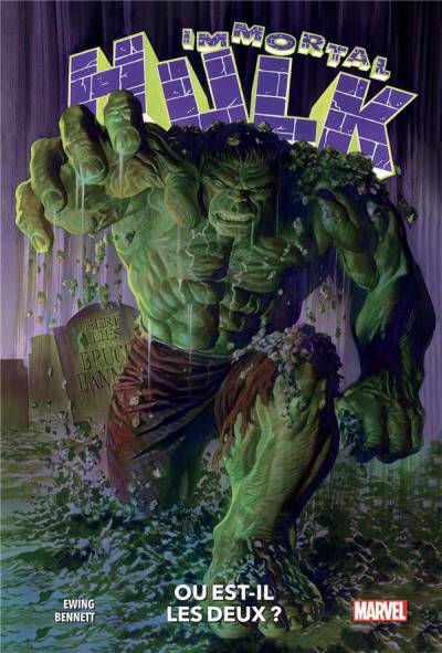 Couverture Immortal Hulk tome 1
