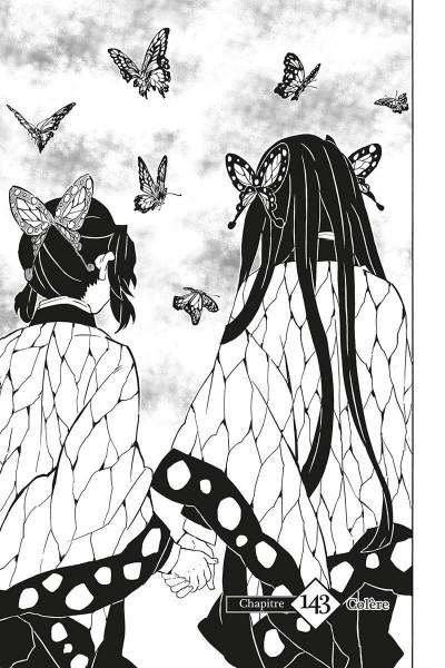 Page 6 Demon slayer tome 17