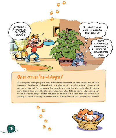 Page 7 la vie chez mon chat