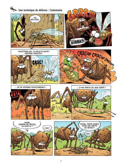 Page 4 Les insectes en BD tome 2