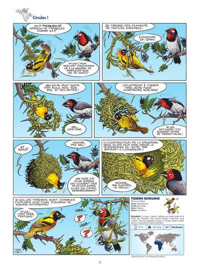 Page 8 Les oiseaux en BD tome 2