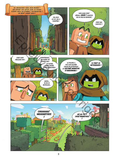 Page 3 Le journal d'un noob tome 2