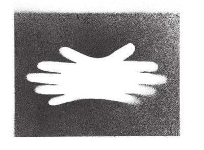 Page 5 La main à cinq doigts