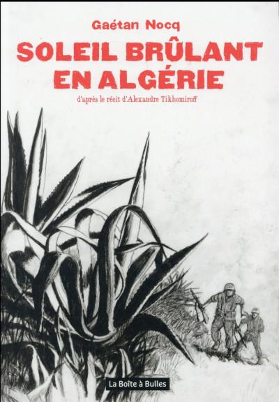 image de Soleil brûlant en Algérie