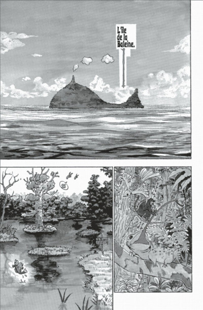 Page 9 hunter x hunter tome 1