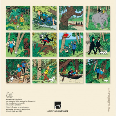 Page 4 Petit calendrier à poser Tintin 2021 - Save the planet