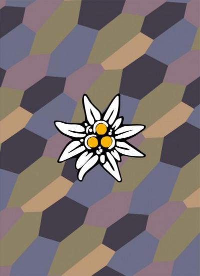 image de Coffret pilote à l'edelweiss tome 3 + Cale
