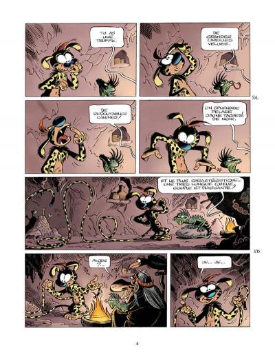 Page 4 Marsupilami tome 33