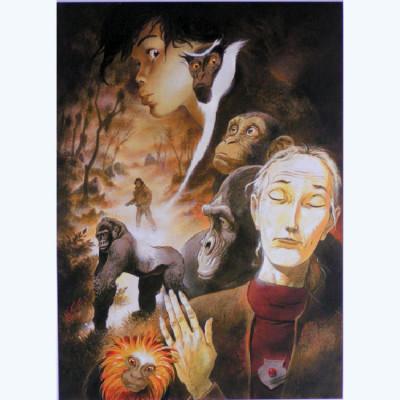Page E Affiche ; dicated to Dian Fossey ; Frank Pé ; Signée & Numérotée 250 ex. ; 50x70