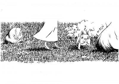 """image de Illustration à l'encre """"Bulldog"""""""