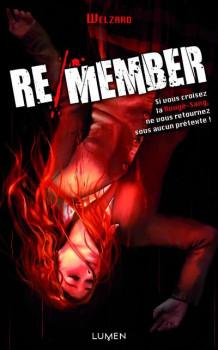Re/member - roman