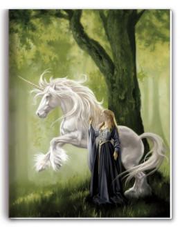 cahier princesse